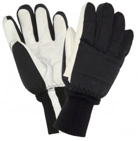 G16 Extreme Cold Store Glove